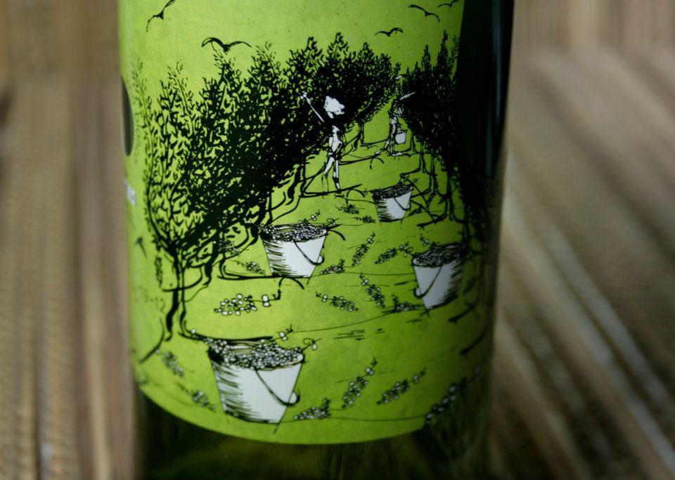 Detalle ilustración. Diseño labeling para vino blanco de las bodegas Torrevellisca-Zagromonte